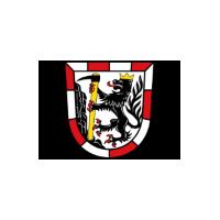 Wappen von Arzberg