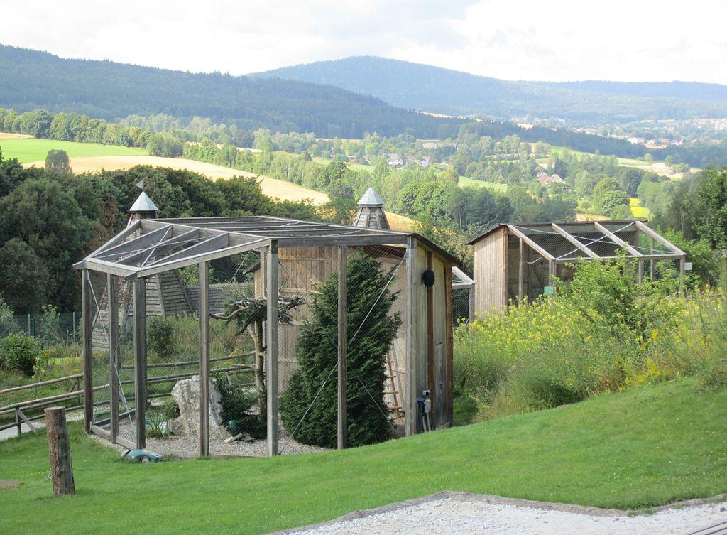 Heiraten im Greifvogelpark am Katharinenberg Wunsiedel